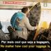 Cool luggage…