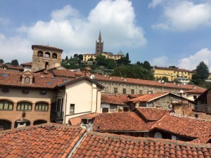 Rooftops, Pinerolo, Italy